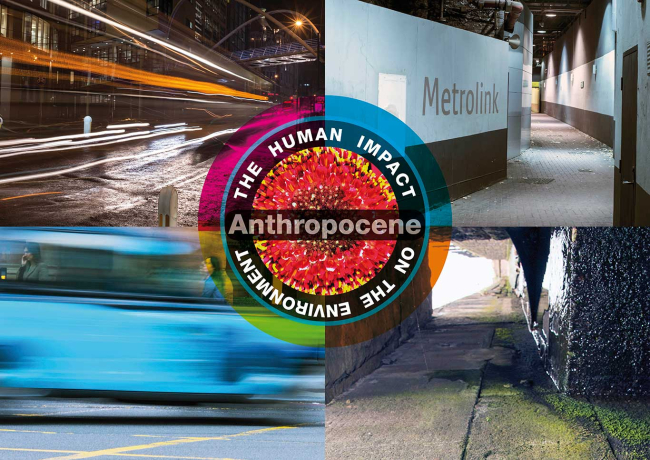 The Human Impact on the Environment: Anthropocene